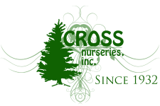 Cross Nurseries